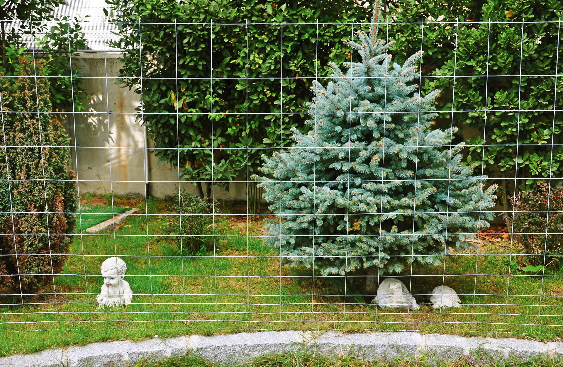 Animal Welded Wire Fences
